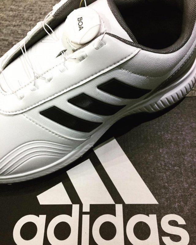 zapatos adidas golf hombre colombia